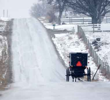 Amish Buggy in the Illinois Winter